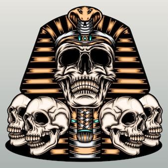 Illustrazione della mummia del cranio.
