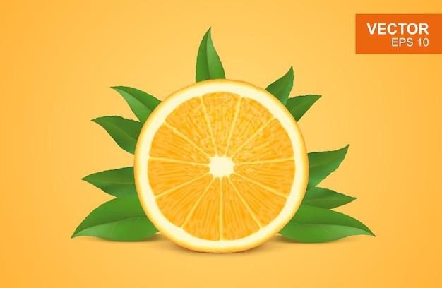Fetta di arancia fresca realistica illustrazione 3d