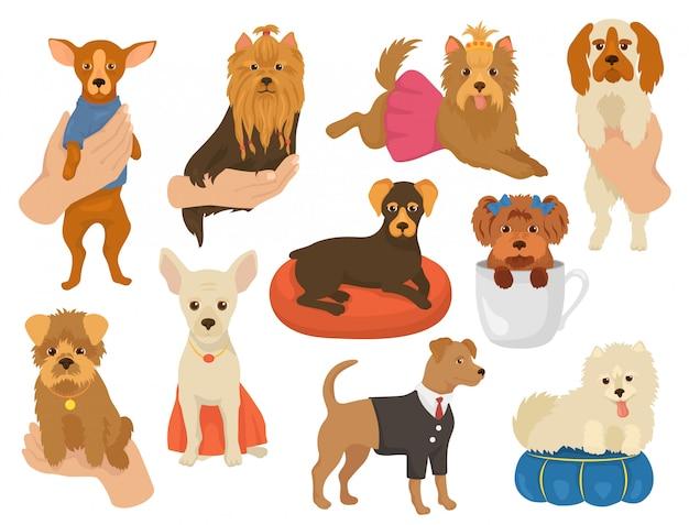 Piccolo cane un cagnolino carattere simpatico collare di cane animale e domestico giovane cucciolo a portata di mano illustrazione doggish set di razza canina yorkshire chihuahua amico isolato su sfondo bianco