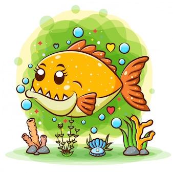 Il piccolo piranha arancione ha molti grandi denti