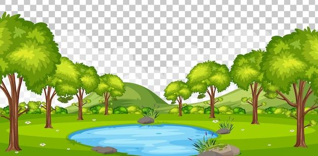 Piccola palude nella scena del parco naturale su sfondo trasparente