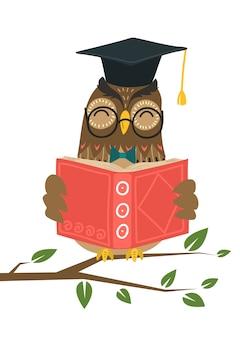 Libro di lettura del gufo intelligente sul ramo di un albero