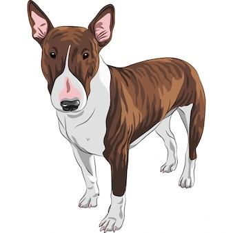 Cartone animato sorridente bull terrier cane di razza