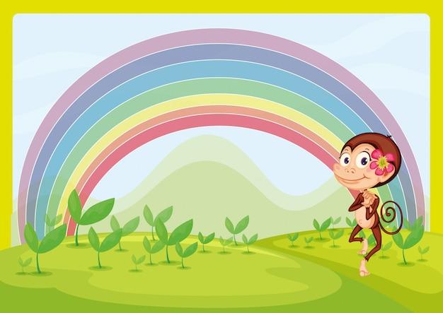 Una scimmia sorridente e un arcobaleno