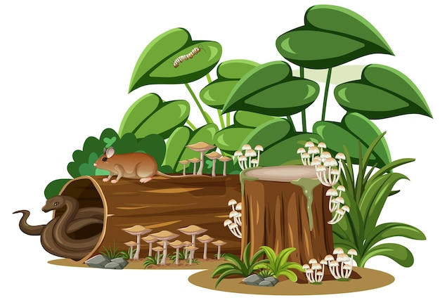 Serpente e topo con legname di funghi su sfondo bianco
