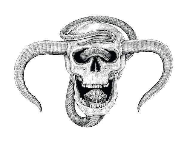 Serpente con la mano umana del cranio che disegna l'illustrazione d'annata dell'incisione