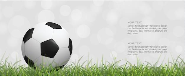 Pallone da calcio di calcio sul campo di erba verde e sfondo bokeh sfocato luce