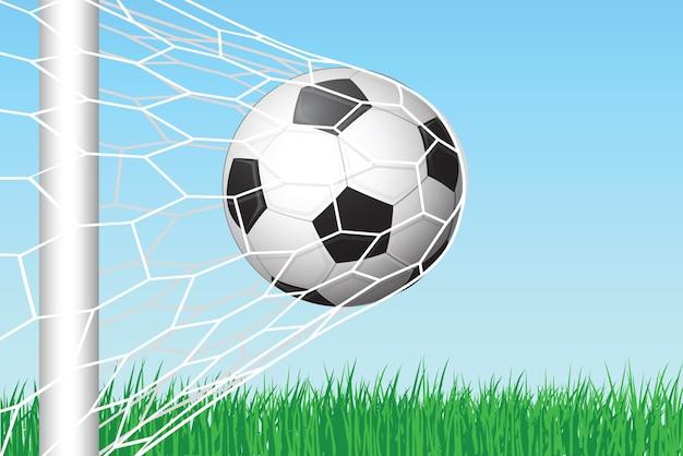 Calcio calcio in rete