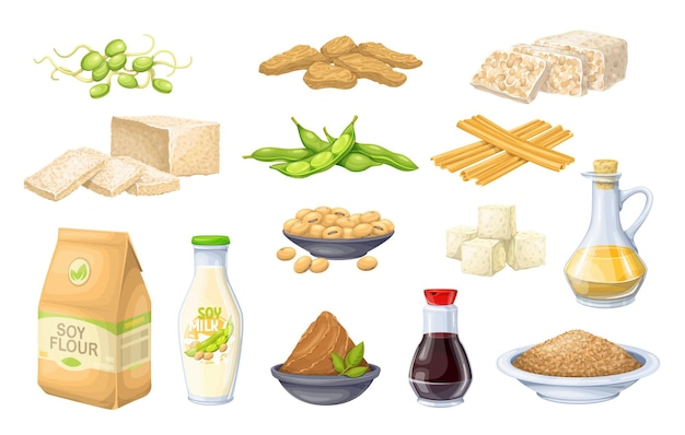 Icona del prodotto di soia. germogli di soia, pelle di tofu, latte di soia coagulato, semi di soia, tempeh, miso, farina ed ets.
