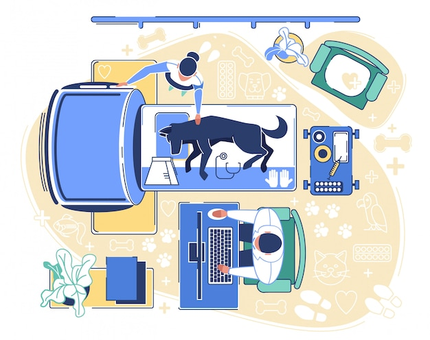 Tomografia specialistica di cane conduttore in clinica