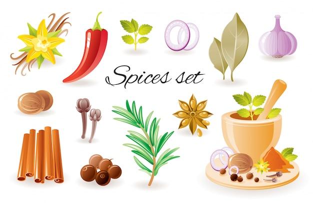 Icona di erbe aromatiche con aglio, cannella, peperoncino, alloro, fiori di vaniglia, rosmarino, menta, anice. Vettore Premium