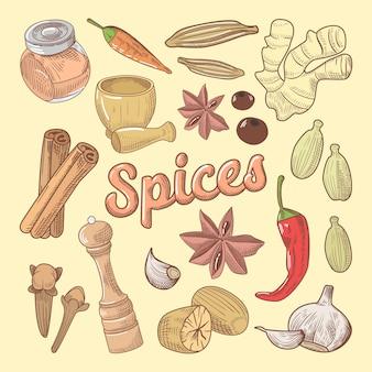 Doodle disegnato a mano di spezie con peperoncino e aglio