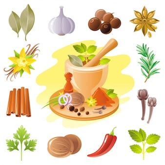 Insieme dell'icona di spezie ed erbe. illustrazione di condimento alimentare.