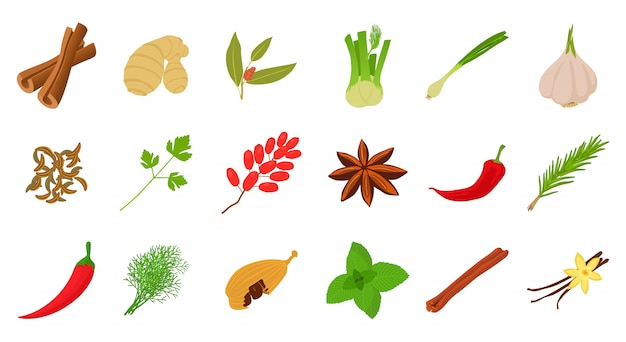Set di icone di spezie
