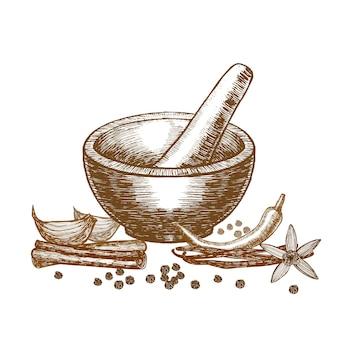 Spezie e mortaio con schizzo di tiraggio della mano del pestello
