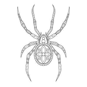 Ragno disegnato in stile doodle