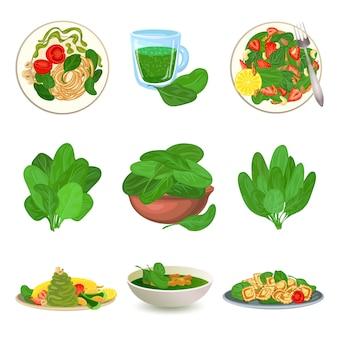 Set di icone di spinaci. insieme del fumetto delle icone di spinaci