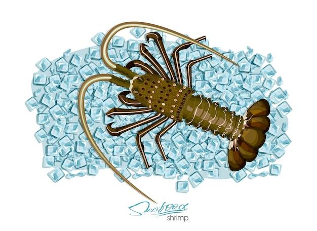 Aragosta su cubetti di ghiaccio in stile cartone animato illustrazione vettoriale aragosta fresca