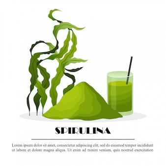 Manifesto di spirulina con le alghe del frullato della polvere delle alghe isolato su fondo bianco, illustrazione. cibo salutare.