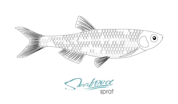 Icona di pesce schizzo spratto spratti marini isolati dell'oceano atlantico pesce di mare silhouette lineare
