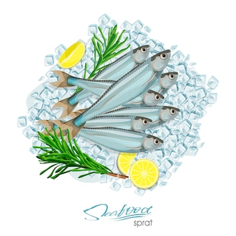 Icona di pesce schizzo spratto spratti marini isolati dell'oceano atlantico con rosmarino e limone su cubetti di ghiaccio