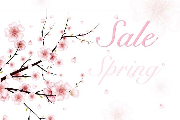 Sfondo primavera. illustrazione del ramo di fioritura primaverile con fiori rosa, gemme, petali che cadono. realistico su sfondo bianco. ramoscello di ciliegio in fiore.