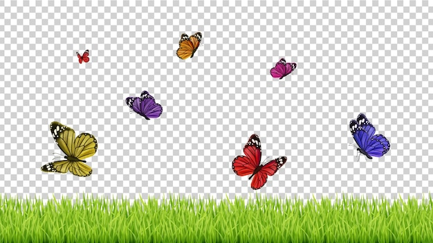 Sfondo di primavera. erba realistica, farfalle volanti di colore. illustrazione di prato verde isolato.