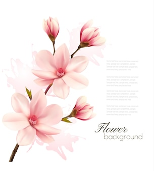 Sfondo primaverile con brunch in fiore di fiori rosa.