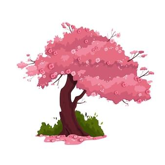 Illustrazione del ciliegio di primavera
