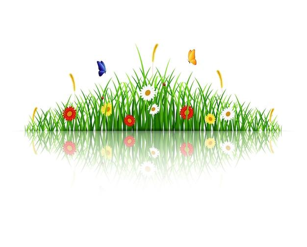Erba verde di primavera con fiori e farfalle