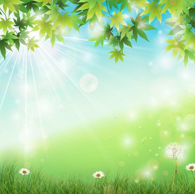 Prato di primavera con sfondo di foglie verdi