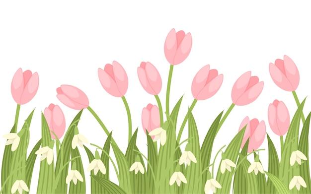 Primavera rosa tulipano e galantus illustrazione
