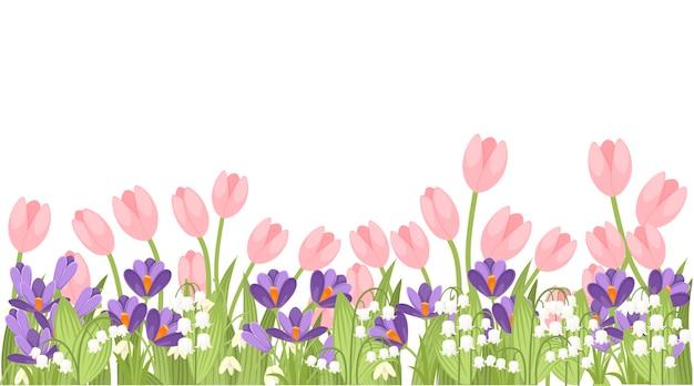 Illustrazione del tulipano rosa di primavera