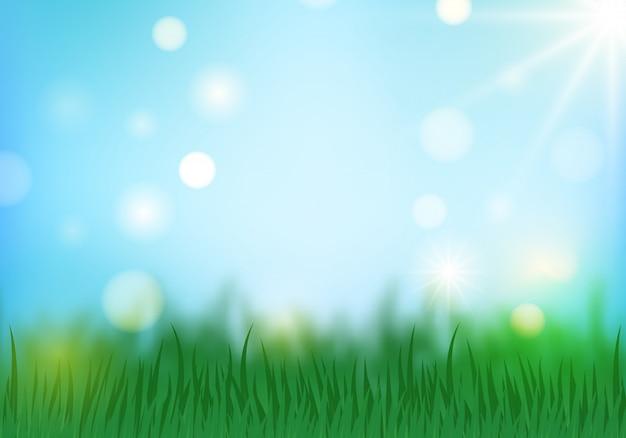 Fondo di estate e della primavera con erba verde e cielo blu. Vettore Premium