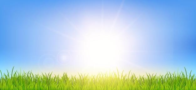 Sfondo primaverile o estivo con campo di erba verde e paesaggio all'alba