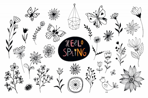 Raccolta di tempo di primavera con i fiori disegnati a mano e le piante isolati su bianco