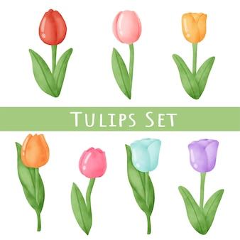 Set di tulipani di primavera.
