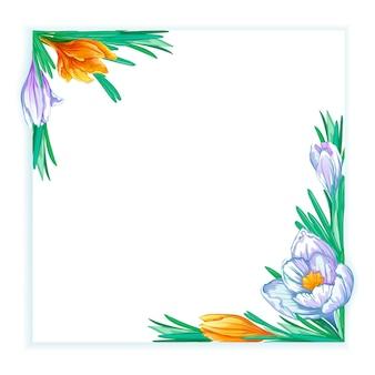 Cornice quadrata con crochi primaverili bianchi e arancioni. modello floreale per testo o foto.