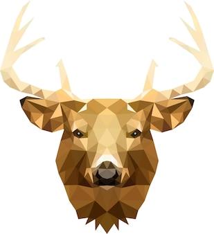 Una testa di cervo con bellissime corna in cubi triangolari, un righello nel gruppo