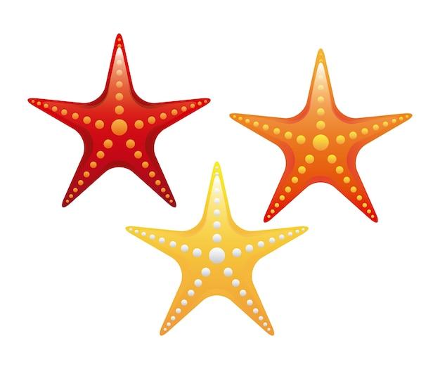 Progettazione delle stelle marine sopra l'illustrazione bianca di vettore del fondo