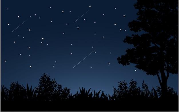 Cielo stellato a mezzanotte con sagoma di albero