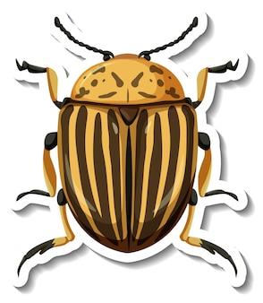 Un modello di adesivo con vista dall'alto di scarabeo di patata del colorado isolato