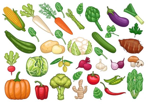 Stock vector set di illustrazione grafica di oggetti vegetali