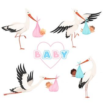 Cicogna con bambino. volo sveglio dell'uccello con le pose divertenti della mascotte del fumetto dei piccoli bambini della tettarella neonata