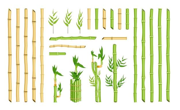 Insieme di elementi del telaio del bordo dello stelo del bastone di bambù curvo dritto. bastone singolo e fascio, foglia di canna vuota verde, vegetazione della foresta pluviale ecologica per il design illustrazione vettoriale isolato su sfondo bianco