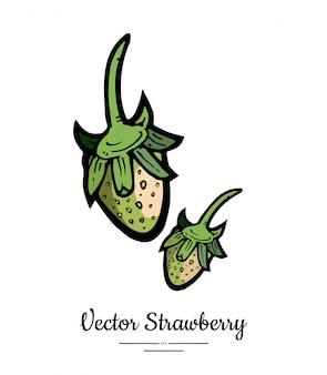 Fragola isolata illustrazione disegnata a mano di bacche verdi icona di frutta menu cibo alla moda vegetariano fragola intera