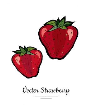 Fragola isolata illustrazione disegnata a mano di bacche rosse. fragola intera dell'icona della frutta del menu vegetariano dell'alimento d'avanguardia