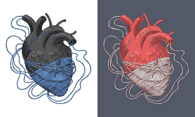 Illustrazione stilizzata del cuore aggrovigliato nei fili. vettore