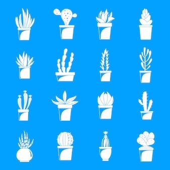 Set di icone di cactus e succulente, stile semplice