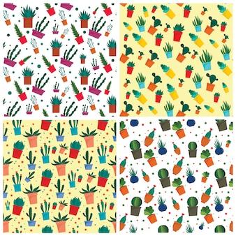 Insieme di modelli succulenti